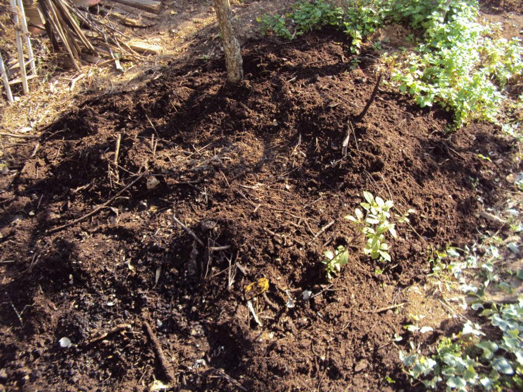 剪定枝堆肥