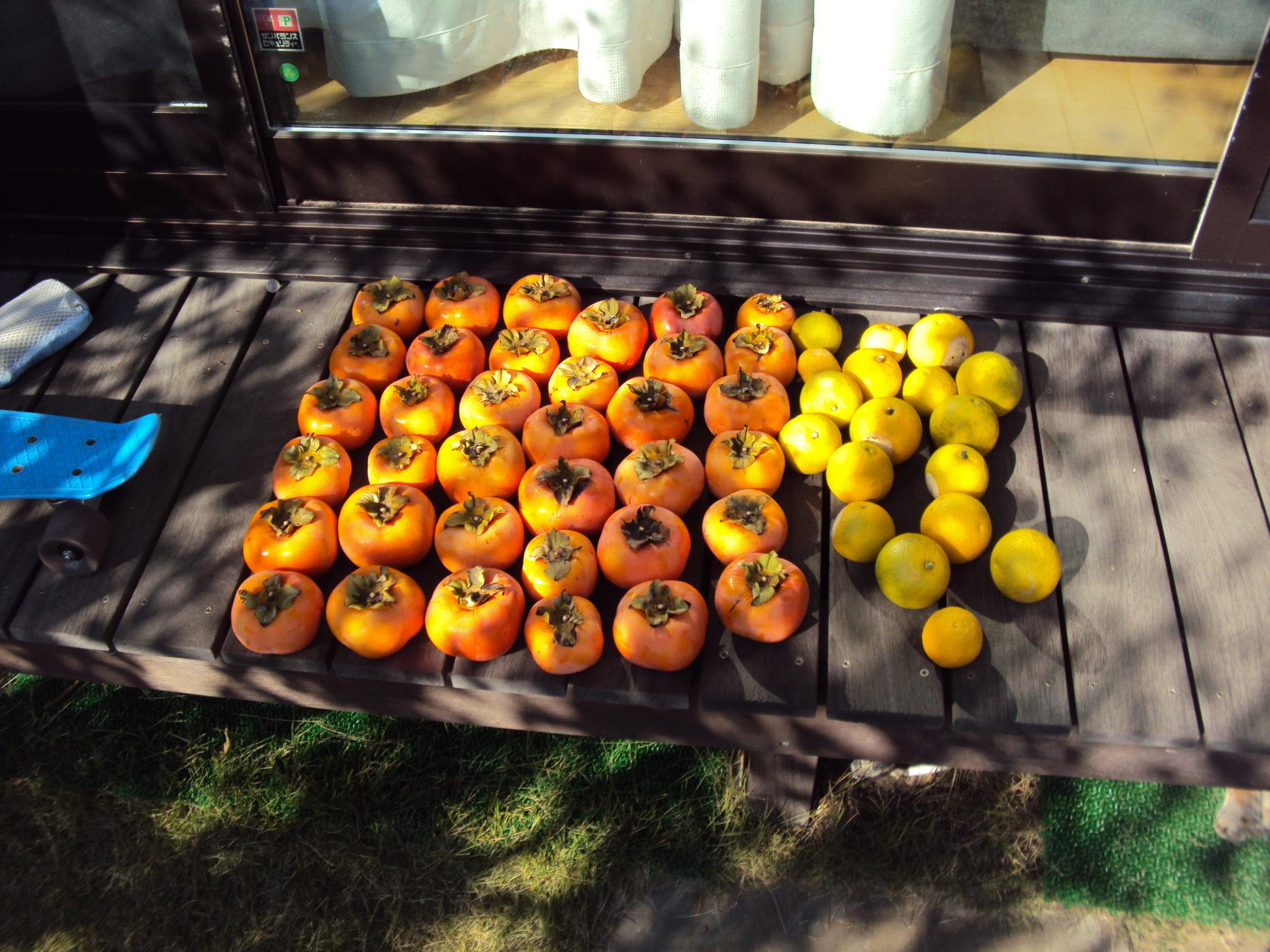 柿とかぼず